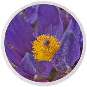 Purple And Gold Round Beach Towel
