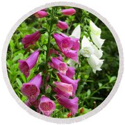 Purple And White Bell Flowers Round Beach Towel