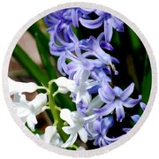 Purple And White Hyacinth Round Beach Towel