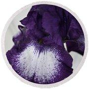 Purple And White Iris Bloom Round Beach Towel