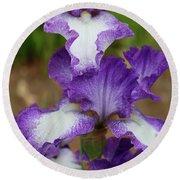 Purple And White Iris Layers Round Beach Towel