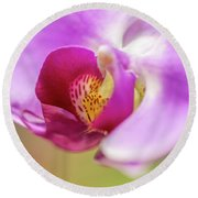 Purple And White Orchid 2 Round Beach Towel