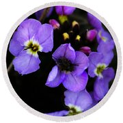 Purple Arctic Wild Flowers Round Beach Towel