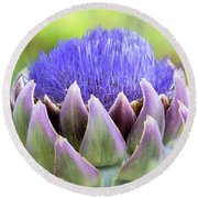 Purple Artichoke Flower  Round Beach Towel