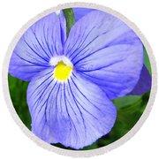 Purple Blue Pansey Round Beach Towel