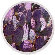 Purple Cacti Round Beach Towel