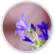 Purple Campanula Blooms Round Beach Towel