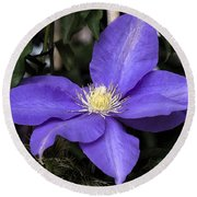 Purple Clematis Round Beach Towel