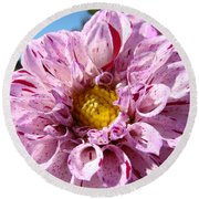Purple Dahlia Flowers Pink Floral Art Prints Canvas Garden Baslee Troutman Round Beach Towel