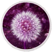Purple Dandy Round Beach Towel