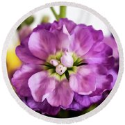 Purple Delphinium Round Beach Towel