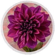 Purple Dhalia Round Beach Towel