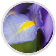 Purple Dutch Iris Flower Macro Round Beach Towel