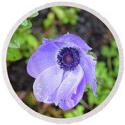 Purple Flowering Anemone Flower In A Lush Green Garden Round Beach Towel