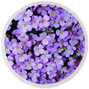Purple Flowers - Rockcress Round Beach Towel