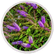 Purple Flowers Of Chiloe Round Beach Towel
