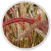 Purple Fountain Grass Abstract By H H Photography Of Florida Round Beach Towel