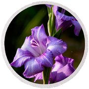 Purple Glads Round Beach Towel