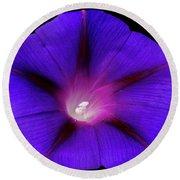 Purple Glory Round Beach Towel