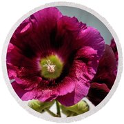 Purple Hollyhock Round Beach Towel
