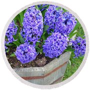 Purple Hyacinth Flowers Planter Round Beach Towel
