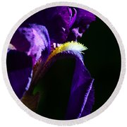 Purple Iris 2 Round Beach Towel