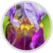 Purple Iris 2018 Round Beach Towel