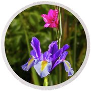 Purple Iris And Gladioli Byzantinus Round Beach Towel