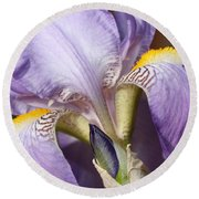 Purple Iris Beauty Round Beach Towel