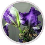 Purple Iris Water Drops Round Beach Towel