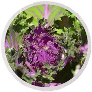 Purple Kale Round Beach Towel