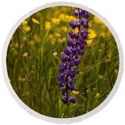 Purple Lupin And Buttercups Round Beach Towel