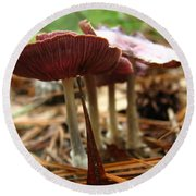 Purple Mushroom 2 Round Beach Towel