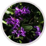 Purple Orchid Plant Round Beach Towel