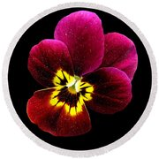 Purple Pansy On Black Round Beach Towel