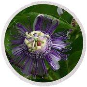 Purple Passion Flower Round Beach Towel