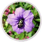 Purple Petunia With A Bee Round Beach Towel