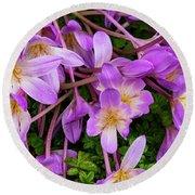 Purple Rain Lilies Round Beach Towel