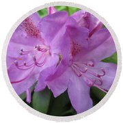 Purple Rhododendron Round Beach Towel