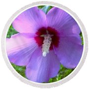 Purple Rose Of Sharon In Circle Frame Round Beach Towel
