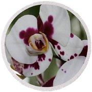 Purple Splash Orchid 3 Round Beach Towel