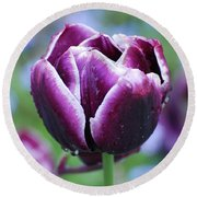 Purple Tulips With Dew Drops On The Outside Of The Petals Round Beach Towel