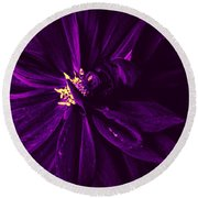 Purple Velvet Round Beach Towel
