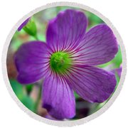 Purple Wildflowers Macro 1 Round Beach Towel