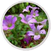 Purple Wildflowers Macro 2 Round Beach Towel