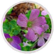 Purple Wildflowers Macro 3 Round Beach Towel