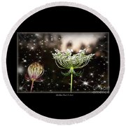 Queen Annes Lace And Sparkles At Dusk Round Beach Towel