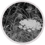 Queen Annes Lace Round Beach Towel