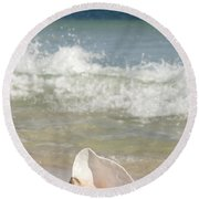 Queen Conch On The Beach Round Beach Towel