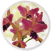 Queen Of Orchids Round Beach Towel